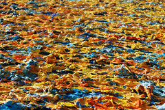 Berlin | Auswrtiges Amt (Alex Korting) Tags: berlin colors germany painting deutschland europa europe colours hauptstadt government colourful gem bunt farben departmentofstate auswrtigesamt bundesregierung gemlde departmentforforeignaffairs departmentforstate auswrtigesamt