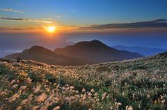 SUNSET AT DA-TUN MOUNTAIN 日落-芒花-大屯山 (愚夫.chan) Tags: sunset mountain datun at 日落芒花大屯