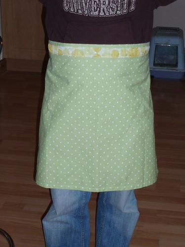 Pretty apron (beautifully modelled by Mr WF)