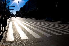 Time to cross (Berts @idar) Tags: contraluz calle zaragoza paseo efs1855mmf3556 espaa canoneos400ddigital paseoconstitucin