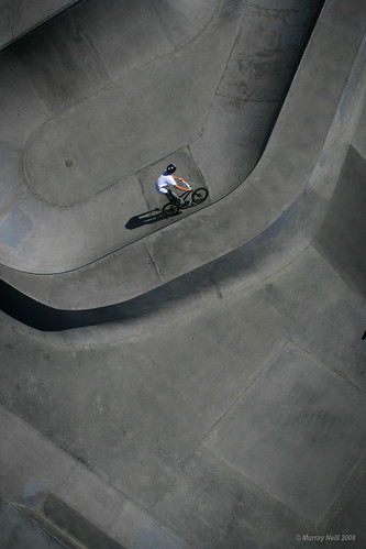 Bike bowl  (vertical)