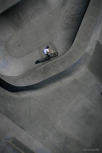 Bike bowl (vertical)