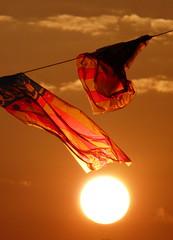 Banderas al sol (I) (.Bambo.) Tags: sun sol valencia atardecer calle fiestas cielo naranja banderas adornos senyera comunidadvalenciana specialpicture