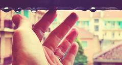 still raining (fi0na) Tags: portrait italy selfportrait water colors rain june photoshop self drops focus eau italia colours dof action bokeh couleurs balcony main fingers perspective fake drop ring taglio piemonte nails rainy crop mano autoritratto raining giugno acqua colori pioggia ritratto piedmont memyselfi medio italie fede han dita citt balcone indice prospettiva goccia gocce asti mignolo monferrato anello 2011 unghie pollice anulare orizzontale ritocco fi0na