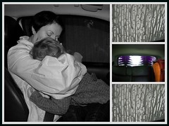 54 366 - The Car wash [from hell] (Ly (Lyanne Wylde Photography)) Tags: car violet carwash foam cuddles lyanne