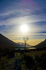 Glen Etive (Z0L1TA) Tags: sky sun mountains tree water scotland allrightsreserved lochetive sigma1770mm mywinners canon400d zolita1908 zolitamcguicken wwwzolitacouk photographybyzolitamcguicken  photographybyzolitamykytyn zolitamykytyn zolitaphotography httpzolitaphotographywixcomzolita olita