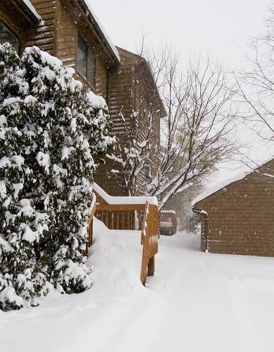 Instant Winter