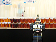 Beer lined up at temporary Murrayfield bar at Scotland v England 6 nations match 2008