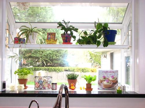 Garden window kitchen kitchen design photos for Kitchen garden windows