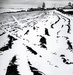 No 87 Snowfield (Nu Scot) Tags: winter snow rural landscape grey scotland countryside sketch ebay view aberdeenshire auction stormy farmland northeast tone agricultural stubble grampian ploughedfield dailydraw2008
