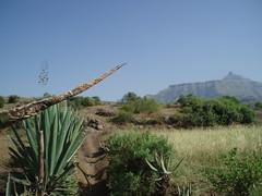 Éthiopie, entre Lalibela et Genata Mariam