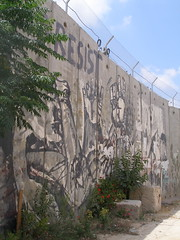 The Separation Wall, Tulkarim