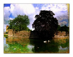 Wells # Bishop pond (laluzdivinadetusojos) Tags: england panorama reflection castle landscape swan pond wells somerset reflexions bishop rubyphotographer
