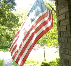 Stars and Stripes in the sun