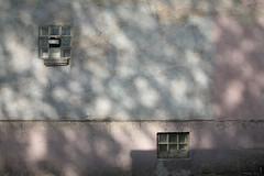 Frühling (LichtEinfall) Tags: shadow wall composition schatten kalk frühling glasbausteine erpe e080a raperre urbancubism