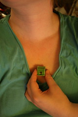 The tiniest home imaginable (jesse k.) Tags: house selfportrait home heart tiny 365days