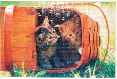 Kitty's hide-out (Leonisha) Tags: cat basket kittens puzzle jigsawpuzzle ktzchen korb