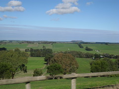Countryside near Mt Barker