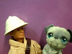 MADELMAN's Best Friend (8 Skeins of Danger) Tags: pet hat shop toy action helmet bulldog figure pith littlest madelman 8skeinsofdanger