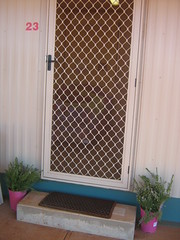 Donga front door