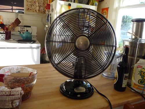 new fan