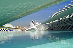 CITY OF THE ARTS AND THE SCIENCES OF VALENCIA (jmhdezhdez) Tags: city travel bridge copyright espaa abstract building art history tourism water glass valencia architecture river spain opera europe arte edificio hamilton arts engineering ciudad cable f1 ferrari paseo calatrava curve curved alameda alonso modernarchitecture raikkonen masa sciences stay agora santiagocalatrava allrightsreserved vidrio espania ciudaddelasartesylasciencias pritzker curving espanya turia arquitecto hormign ingeniera kovalainen ingeniero trencadis principefelipe renaultf1team abigfave serrera cityoftheartsandsciences ciudaddelasartesylascienciasdevalencia arquitecturacontempornea granpremiof1 httpwwwjmhdezhdezcom contactjmhdezhdezcom josmiguelhernndezhernndez frmula1valencia cityoftheartsandthesciencesofvalence puentedelaserrera wwwjmhdezhdezcom