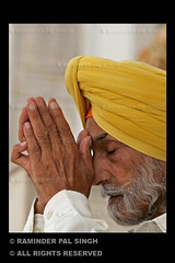 Devotion (Raminder Pal Singh) Tags: portrait india face yellow hair beard eyes hands asia peace prayer pray calm meditation turban amritsar cci goldentemple closedeyes thepca foldedhands raminder saarc yellowturban raminderpalsingh flickrlovers manprayingatthegoldentemple manwithyellowturban manwithfoldedhands prayingwithfoldedhands