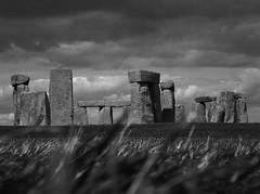 'Stone Henge' (B&W) (;-) SHAGGY) Tags: summer monument stone circle ancient solstice national stonehenge trust salisbury ritual druid wiltshire pagan henge prehistory sarson blackwhitephotos