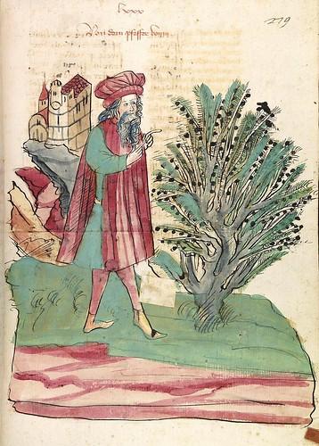 07-fol. 279r- El arbol de la Pimienta