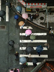chove chuva (DeniSomera) Tags: chuva curitiba esquina guardachuvas