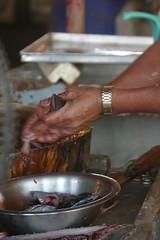 IMG_2236 (Frisno) Tags: fish island asia asien market philippines filipino vendor laguna fishmonger pinoy philipines pilipinas luzon phillipines pinas phillippines filippinerna filipinsk filipinerna filippinsk
