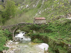 Rio Duje (Tielve, Principality of Asturias, Spain) Photo