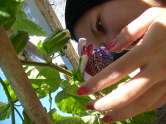 Di red (mayahime) Tags: flor passiflora