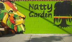 Natty Garden