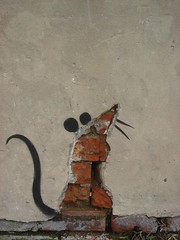 mouse (anthonyturducken) Tags: street new usa streetart art mouse katrina rodent three us interestingness stencil orleans rat louisiana grafitti anniversary neworleans year banksy explore third k3 3k treme schoolofbanksy