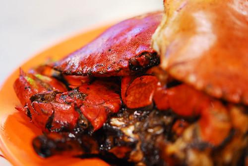 Still Road Pepper Crab - DSC_9680