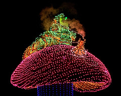 Disney - Hookah Smoking Caterpillar On A Mushroom (Express Monorail) Tags: california walter vacation usa india electric night america dark wonder geotagged fun psp lights losangeles lowlight nikon nightshot availablelight disneyland smoke magic pipe dream sigma wed elias disney mickey parade arabic caterpillar fantasy mickeymouse imagine theme difficult wish orangecounty anaheim float walt dca magical dl dlr themepark hookah aliceinwonderland disneyscaliforniaadventure d300 wdi disneylandresort imagineering disneycharacter electricalparade disneyselectricalparade disneymovie disneyparade disneypictures disneyparks disneyatnight disneypics expressmonorail disneyphotos paintshopprophotox2 geo:lat=33807273 joepenniston disneyphotography disneyimages geo:lon=117919208