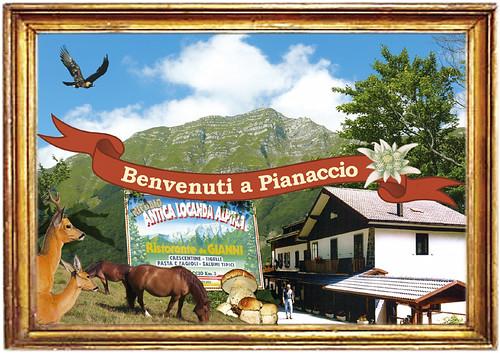 cartolina vintage postcard