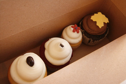 sweet cupcakes, boston