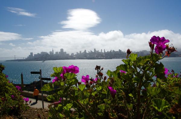 alcatraz_roses_0055