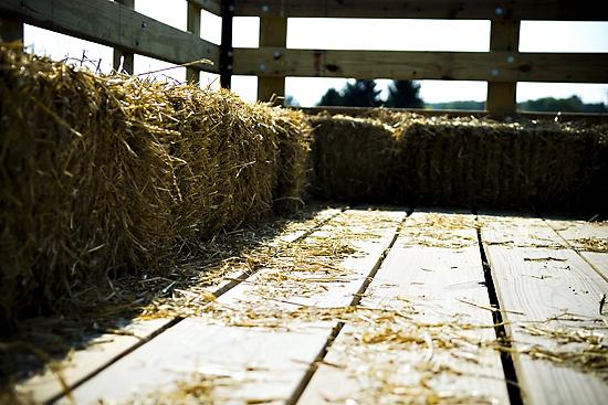Weekend Hay Rides :)