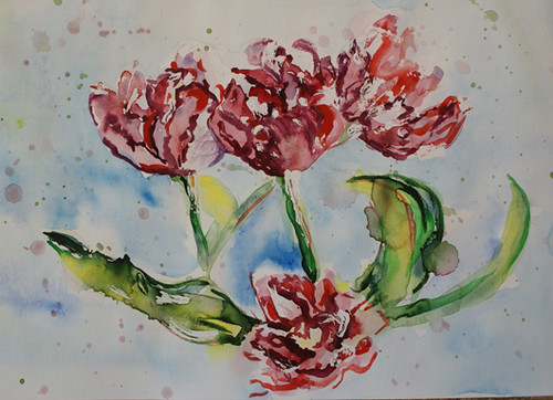Tulips - watercolour sketch