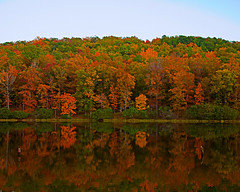 Autumn in Alabama (Southernpixel - Alby Headrick) Tags: autumn trees usa color fall photography al birmingham alabama bloom alby oakmountainstatepark cotcpersonalfavorite albyheadrick