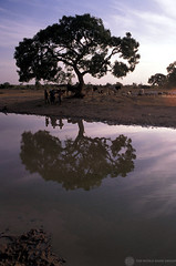 NG007S16 World Bank (World Bank Photo Collection) Tags: africa trees sunset people water animals reflections river landscape shadows soil dirt shore nigeria environment rays climatechange worldbank