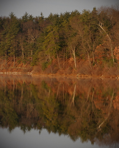 Autumnal Walden, Todd Felton