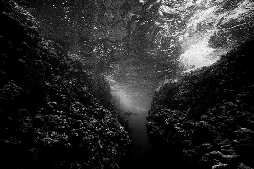 Black and White Underwater scene