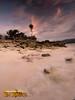 Gaspar Island Morning Shore