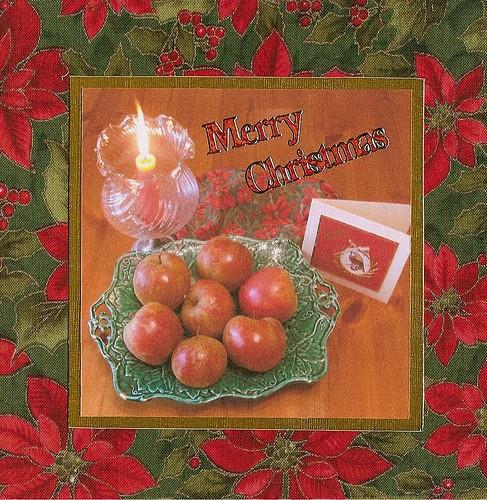 Still Life Photo Christmas Card