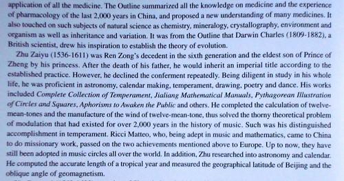 Matteo Ricci Chinglish