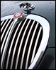 Rostock Jaguar (stefanspy (38)) Tags: detail car germany deutschland jaguar soe rostock hansestadt mecklenburgvorpommern hansestadtrostock abigfave platinumphoto photoshopcs3 canoneos450d tamronaf1750128